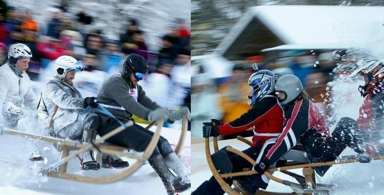德国举行传统牛角雪橇大赛:选手雪中激情飞驰(图)