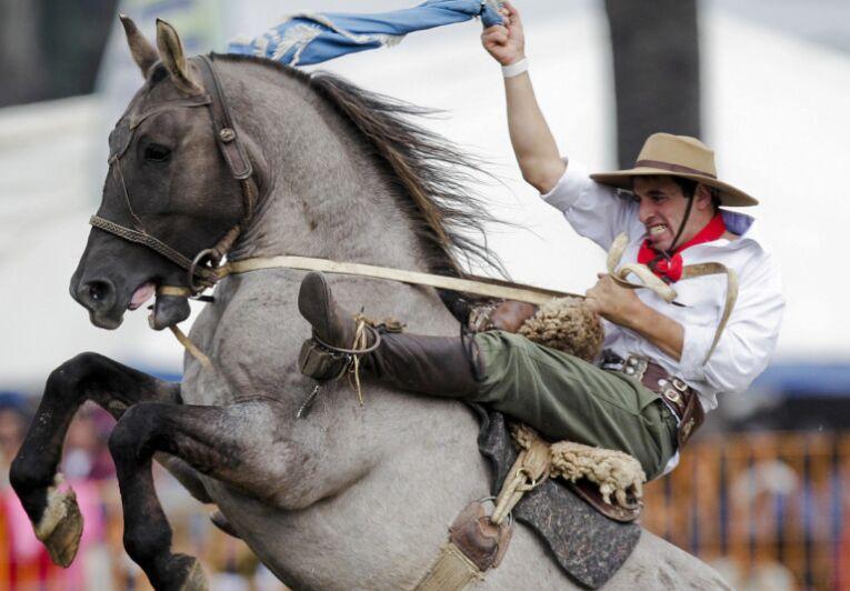 乌拉圭举行南美牛仔大赛 骏马难驭人仰马翻(组图)